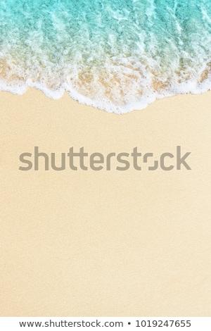 soft wave of the sea on a sandy beach stock photo © len44ik