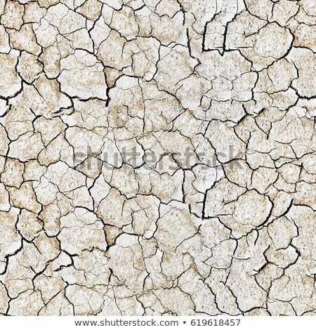 Stock photo: Seamless Cracked Earth Ground Texture