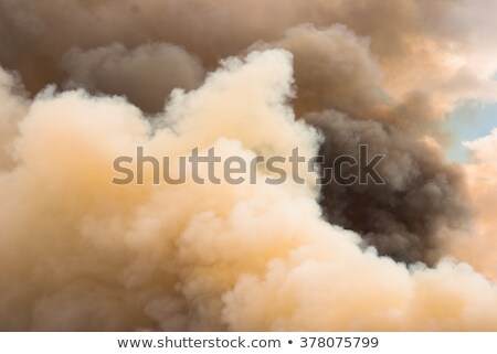 Billowing Fire Clouds in Yellowstone Park Stock photo © emattil
