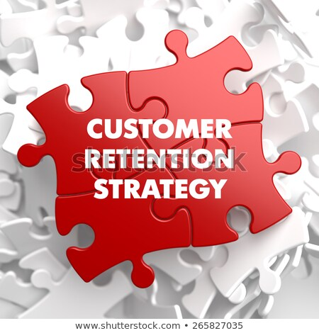 Customer Retention Strategy on Red Puzzle. Stock photo © tashatuvango