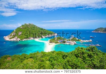 Beautiful beach in Koh Tao, Thailand Stock photo © tommyandone