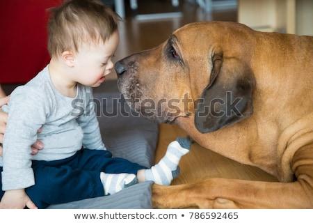 Pet terapia illustrazione ragazza cane bambino Foto d'archivio © adrenalina