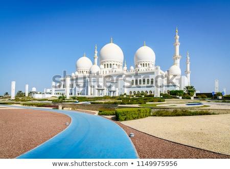 мнение известный мечети Абу-Даби воды бассейна Сток-фото © vwalakte