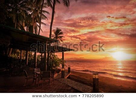 удаленных пляж вечер тропики острове воды Сток-фото © wildnerdpix