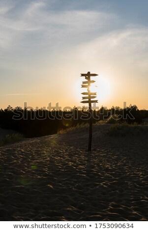 水 方向 簽署 幹 沙漠 沙 商業照片 © stevanovicigor