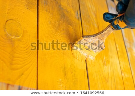 Colorful selection of wood stains and paintbrushes stock photo © ozgur