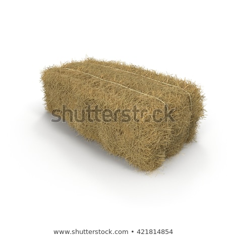 Cow and a pile of haystack Stock photo © bluering