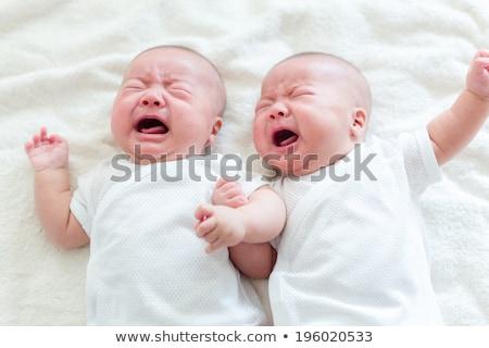 Gêmeo menino irmãos choro caucasiano meninos Foto stock © iofoto