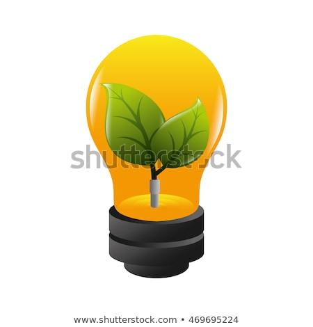 Hoja bombilla clipart imagen web verde Foto stock © vectorworks51