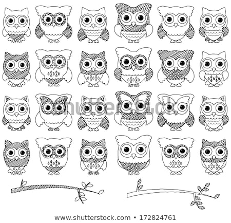 cute owls on wire Stock photo © adrenalina