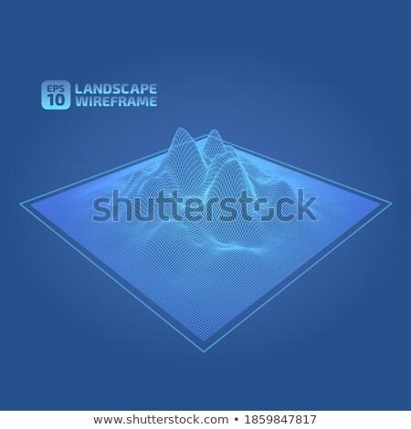 Elegante technologie wireframe digitale Stockfoto © SArts