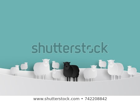 bonitinho · rabisco · ovelha · conjunto · isolado · branco - foto stock © bluering