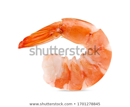 Red shrimp on white background Stock photo © bluering