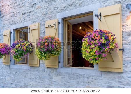 bloem · mand · gelukkige · verjaardag · wenskaart · geschenk - stockfoto © olena