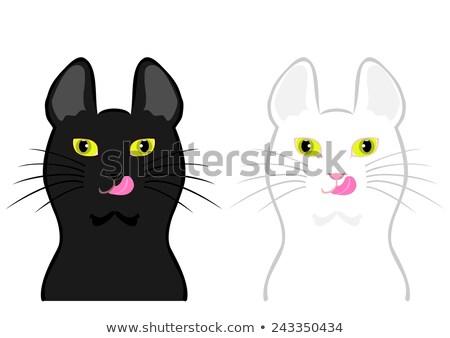 Czarno białe kot charakter portret kolor zwierząt Zdjęcia stock © IS2