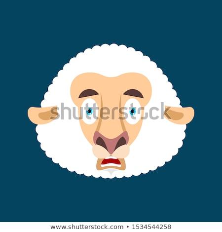 Koyun korkmuş omg yüz avatar benim Stok fotoğraf © popaukropa