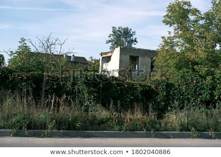 old destroyed building without people stock photo © serg64