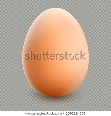 fresh egg isolated transparent background stock photo © cammep