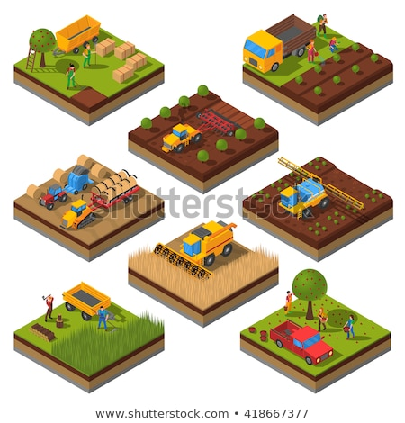 Crop harvesting in orchard isometric 3D element Stock photo © studioworkstock