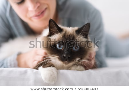 Stockfoto: Happy Young Woman With Cat Lying In Bed At Home