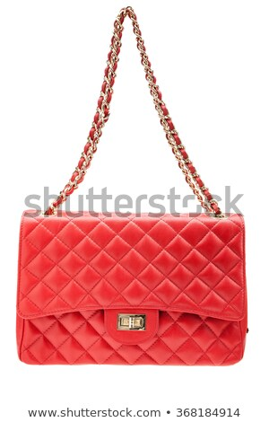 Red womens handbag with clasp isolated on a white background. Vector illustration. Stock photo © Lady-Luck