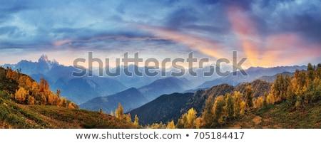 Paisaje cáucaso montanas nubes hierba forestales Foto stock © olgaaltunina