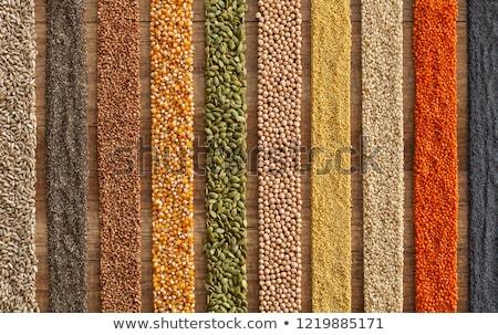 sem · glúten · dieta · opções · sementes - foto stock © lightkeeper