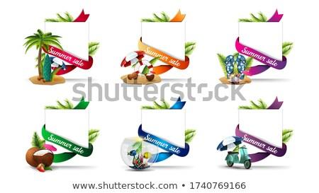Speciale estate offrire adesivo foglie di palma Foto d'archivio © robuart