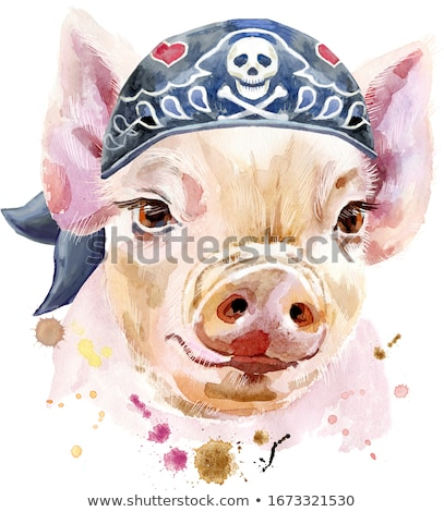 Watercolor portrait of pig wearing biker bandana Stock photo © Natalia_1947