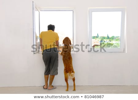 man and dog looking through window stock photo © simply