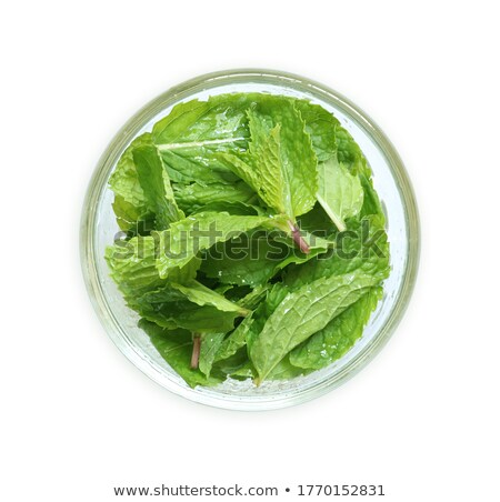 Peppermint leaves from above, paths Stock photo © maxsol7