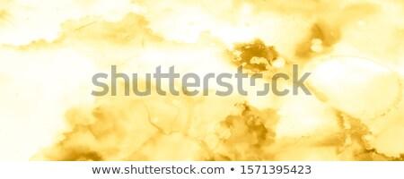 Renkli karışık akrilik altın pembe renkler Stok fotoğraf © vlad_star
