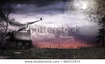 heks · vliegen · bezemsteel · halloween · silhouet · vriendelijk - stockfoto © colematt