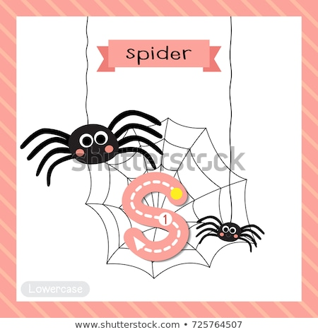 A letter S for spider Stock photo © colematt