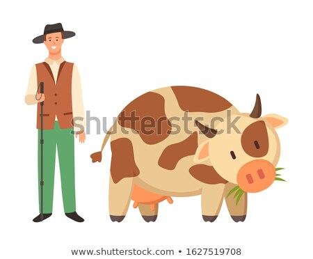 Farmer in Hat and Spotted Cow Cartoon Domestic Stock photo © robuart