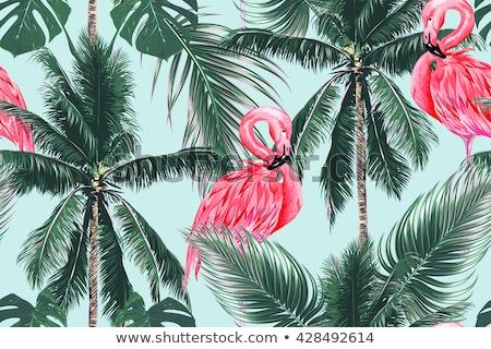 Tropische roze flamingo groene palmbladeren Stockfoto © Artspace