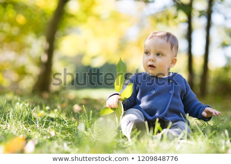 Bebek on bir ay orman iyi zaman Stok fotoğraf © Lopolo