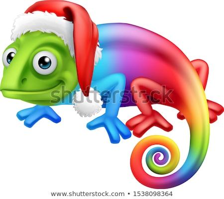 Christmas regenboog kameleon hoed cartoon Stockfoto © Krisdog