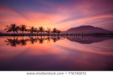 Dağ tropikal manzara gün batımı güzel dramatik Stok fotoğraf © vapi