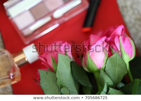 ombretto · palette · rosa · occhi · cosmetici - foto d'archivio © Anneleven