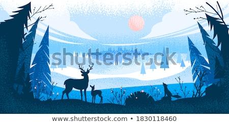 Carte postale animaux forêt noël vecteur cheval Photo stock © robuart
