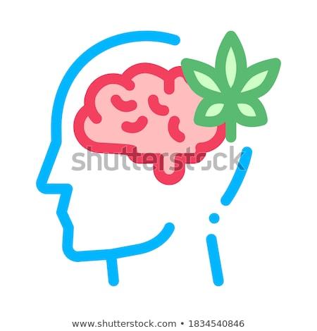мозг лист человека силуэта головная боль вектора Сток-фото © pikepicture