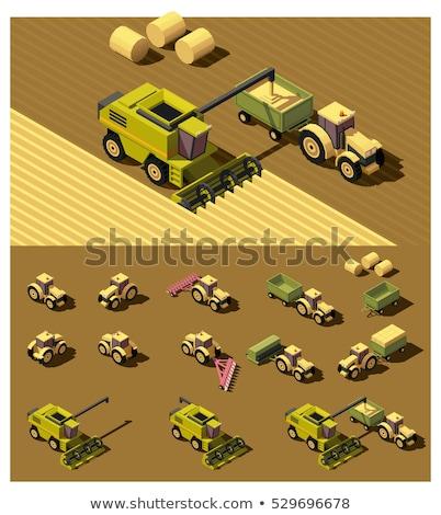 Vector isometric combine harvester in wheat field Stock photo © tele52