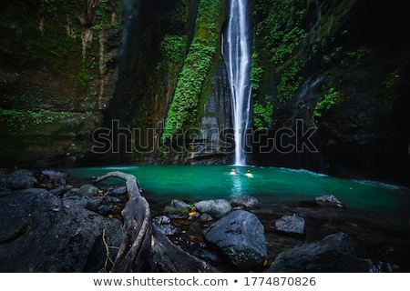 bali, fiji waterfall from the sekumbul waterfalls, indonesia, asia Stock photo © galitskaya