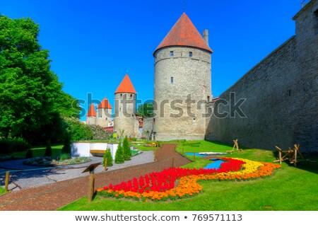 castle walls of tallinn stock photo © backyardproductions