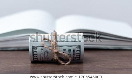 Dolar kitap açmak sayfa yalıtılmış beyaz Stok fotoğraf © stokato