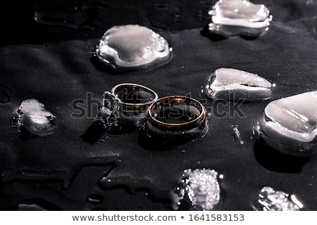 two golden wedding rings on ice surface stock photo © prill