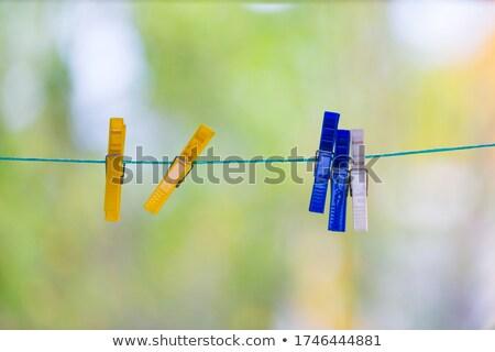 Yellow clothespeg Stock photo © mariematata