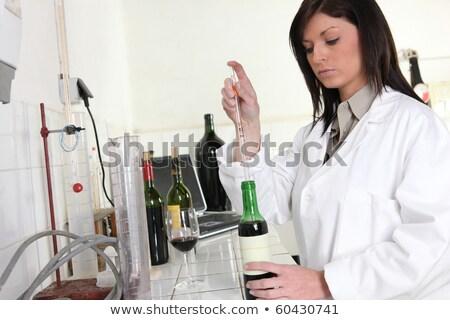 Las personas que trabajan vino laboratorio beber de trabajo persona Foto stock © photography33