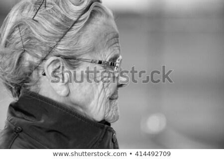 arc · ezüst · net · közelkép · portré · aranyos - stock fotó © carlodapino